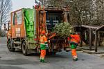Pražské služby a AVE jsou připraveny na vánoční a novoroční svoz odpadu.