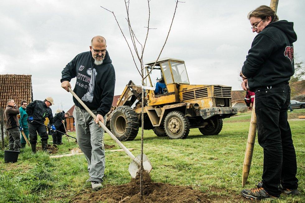 Nadace Via podporuje i sázení stromů.