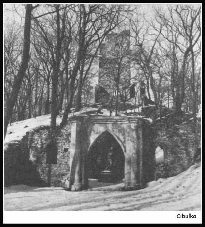 Fotografie rozhledny Cibulka z roku 1981. Zdroj: Pražská příroda