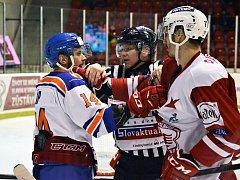 Z hokejového utkání Slavia Praha - Litoměřice.