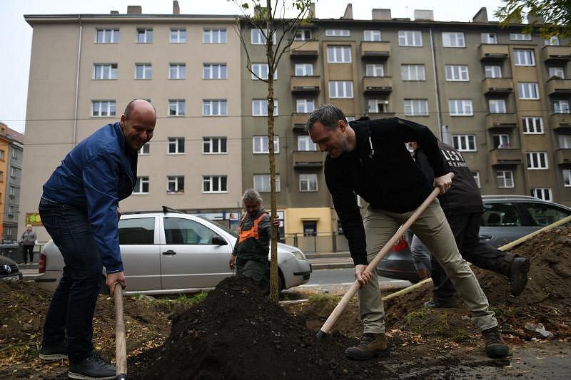 Zdeněk Hřib a Petr Hlubuček pomáhali při výsadbě nových stromů v rámci akce Zastromuj Prahu.