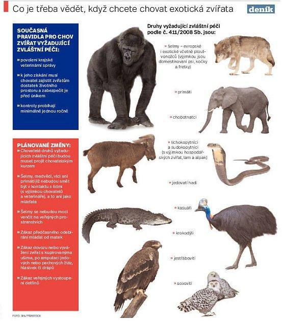 Co je třeba vědět, když chcete chovat exotická zvířata. INFOGRAFIKA