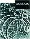 """Jízdní kolo. Buď to byl Pionýr ze sobotínského Velamosu, anebo Favorit zRokycan, co představovalo objekty obrovské touhy československých dětí. Dokázaly se ovšem rádi spokojit isprodukty chebské Esky, která dodávala na trh ioblíbené """"skládačky""""."""