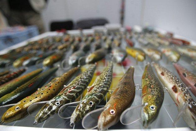 Ve čtvrtek začal rybářský veletrh Petrův zdar ve Veletržním paláci.