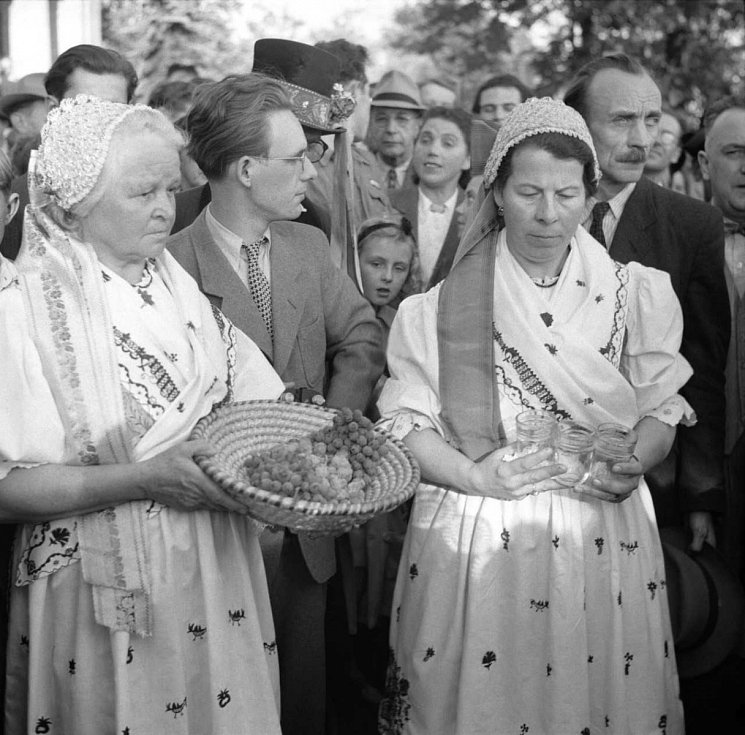 VÍNEČKO BÍLÉ. Říjnová neděle roku 1948 v Havlíčkových sadech byla zasvěcena staročeskému vinobraní.