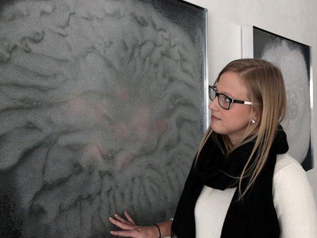 Výstava objektů sklářské výtvarnice Lady Semecké, která využívá klasické techniky rytí skla a techniky fusingu. Výstava v Galerii Kuzebauch potrvá do 24. dubna