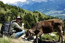 Česko jede na dovolenou aneb jaké to bylo v Tyrolsku.