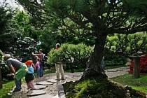 Magistrát věří v případnou dohodu s restituentem tak, aby botanická zahrada o pozemky nepřišla./Ilustrační foto
