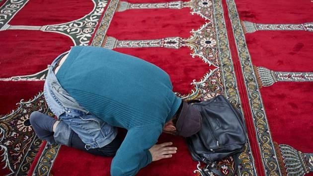 Muslimové žijící v Čechách se v pátek 2. května 2014 sešli poblíž ministerstva vnitra na Letné k protestní modlitbě kvůli nedávnému policejnímu zásahu v objektech Islámské nadace v centru Prahy.