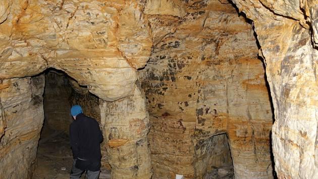 Pracovníci Lesů hl. m. Prahy uklidili odpadky z podzemí v Oboře Hvězda
