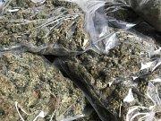 Zabavená marihuana v rámci operace Hvala.