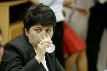 Do celé kauzy se nyní vložila ministryně Džamila Stehlíková.