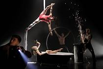 Losers Cirque Company zvou na novocirkusovou kabaretní show.