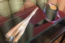Judista Lukáš Krpálek zapůjčil svoji zlatou medaili z Tokia Národnímu muzeu. Ocitla se na čestném místě vedle olympijské pochodně.