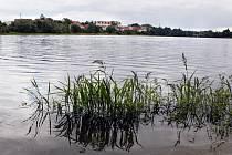 Kyjský rybník.