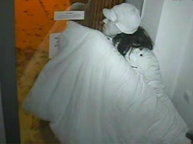 Osoba podezřelá z vloupání do přízemního bytu v ulici Ve Žlíbku na Praze 9.