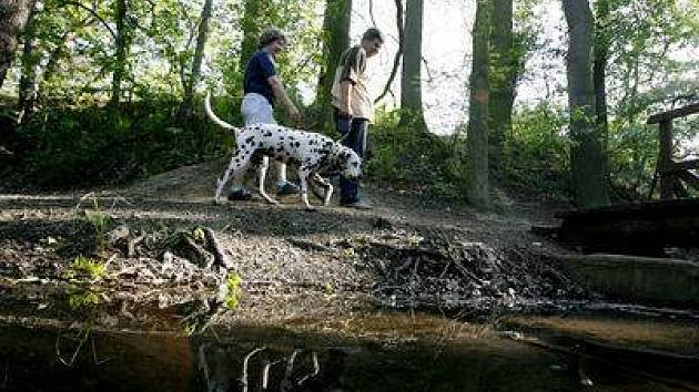 Dvojice venčí psa u Cholupického potoka v Praze 4 Modřanech.
