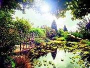 NOVÝ ROZVOJ. Pražská botanická zahrada v minulosti vybudovala atraktivní pavilon Fata morgana, do budoucna chce investovat například do výstavby altánu pro návštěvníky. Vizualizace.