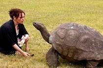 Jonathan je samec želvy obrovské a podobně jako kdysi Napoleon žije ve vyhnanství na Svaté Heleně.