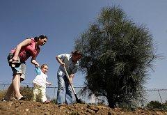 Sázení vzácných jehličnanů v pražské Botanické zahradě probíhalo za přítomnosti známých osobností v sobotu 11. dubna.