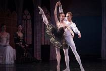 St. Petersburg Festival Ballet