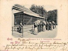 Historická pohlednice pochází z roku 1897 a zachycuje menažerii ve vídeňském Schönbrunnu, současnou Zoo Vídeň - lícní strana.