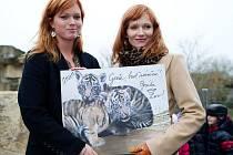 Aňa a Ester Geislerovy pojmenovaly tygří dvojčata Gejša a Gréta.