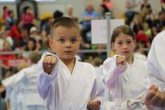 Kamiwaza Karate Cup.