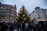 Na pražském Strossmayerově náměstí byl 29. listopadu rozsvícen vánoční strom.