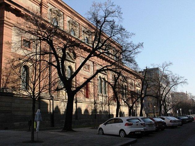 Lípy podél kostela Sv. Václava na Smíchově se dočkají obnovy.