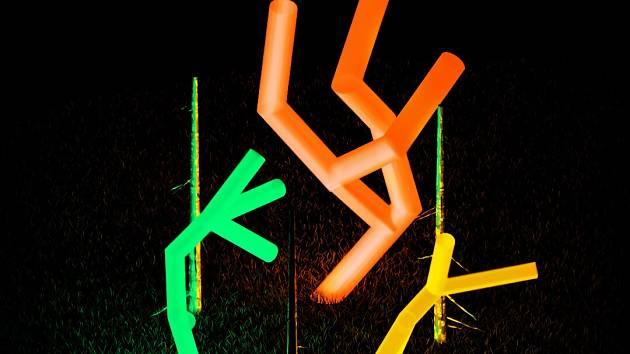 Vizualizace vítězné instalace umělecké výzvy pro Signal Festival s názvem Živý les od Kateřiny Blahutové.