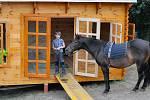 Kůň motivuje děti k výuce