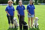 Program 'Era pomáhá regionům': šťastný vodicí pes.