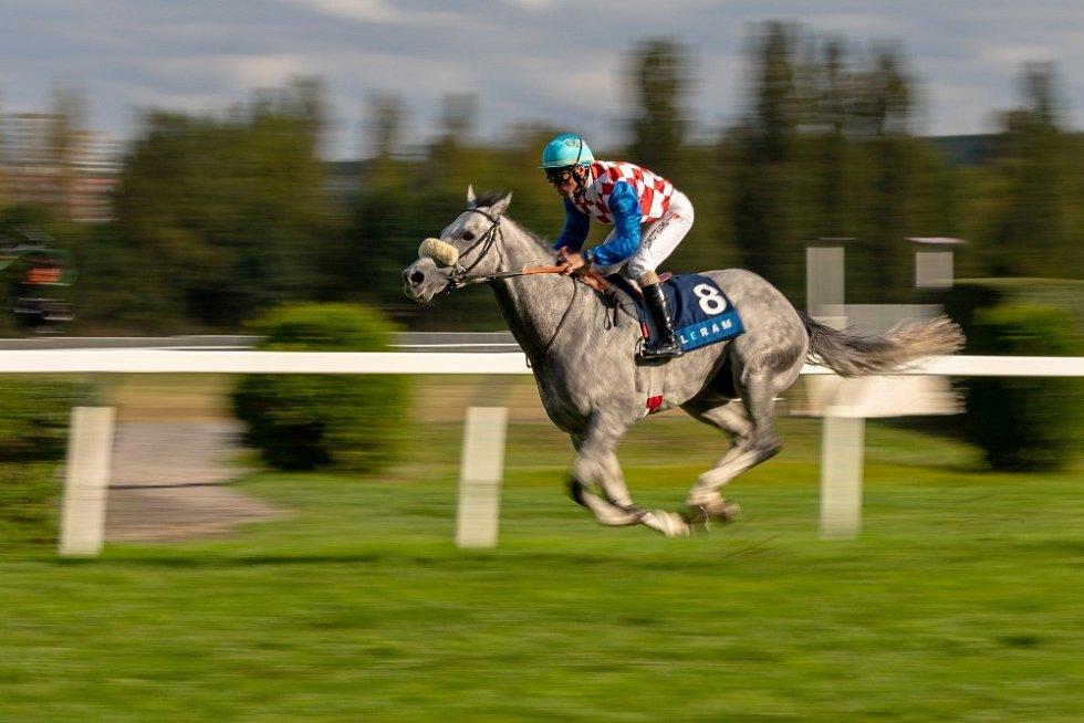 Slovenský šampion Jaroslav Línek obsadil třetí místo. S koněm Politicum ale ovládl hlavní dostih EJC Leram Million.