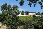 Vinice Grébovka. Vinohrad s romantickým altánem leží v prudkém svahu ve spodní části Havlíčkových sadů v Praze.