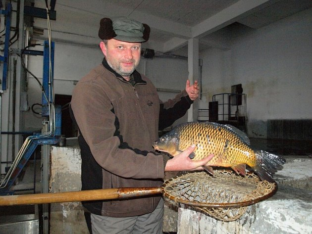 Rybář Stanislav Vago ukazuje nefalšovaného šupináče.