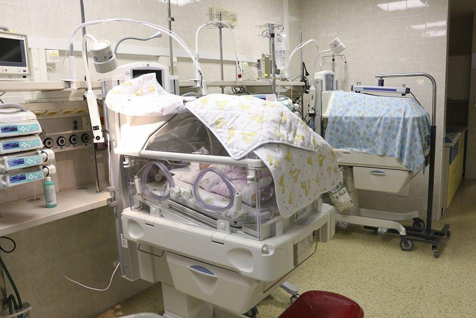 Inkubátory v motolské nemocnici byly vybaveny kamerami. Rodiče mohou vzdáleně sledovat svého potomka.