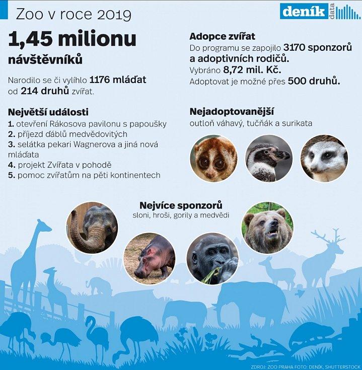 Rok 2019 v pražské zoologické zahradě. Infografika.
