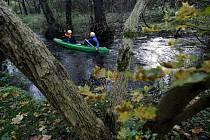 Revitalizací již prošlo například okolí jednoho z největších pražských potoků - Botiče.