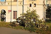 Následky silného větru ve Stromovce a v Letenských sadech.