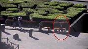Pohled kamery Městské policie
