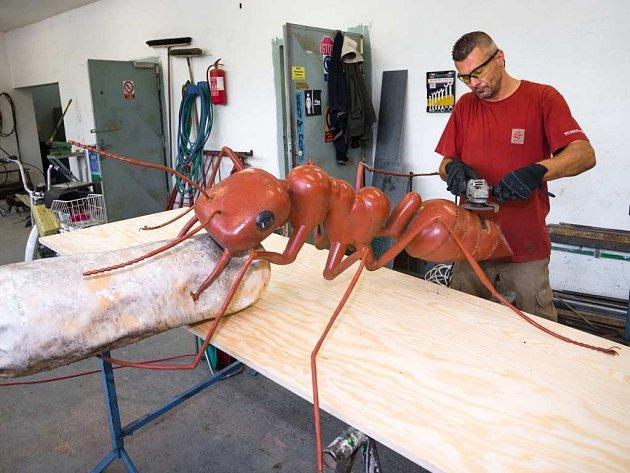 Rekonstrukce modelů mravenců
