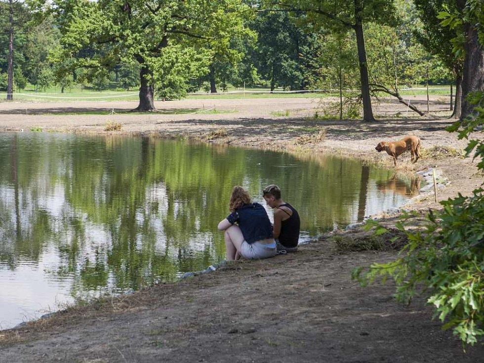 Rybník ve Stromovce.