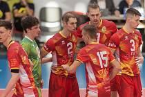 Spolehlivé výkony. Pražští Lvi si na mistrovství republiky juniorů zahrají o medaile.