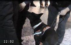 Policejní razie proti dealerům drog v centru Prahy.