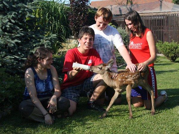 Program 'Era pomáhá regionům': pomáhejme společně živočichům vnouzi.