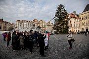 Na Staroměstském náměsti začali 28. listopadu zdobit vánoční strom.