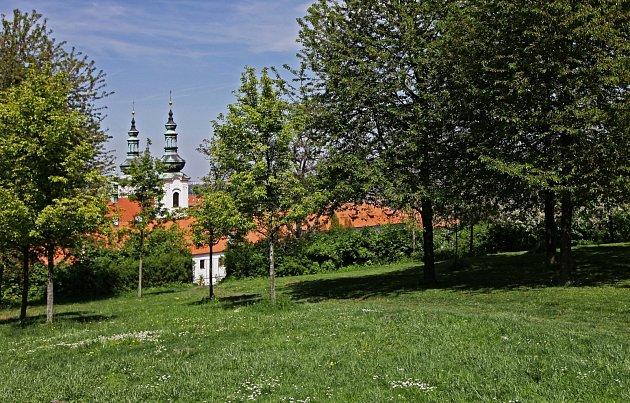 Oblíbená místa  Marka Šindelky - sad na Strahovským klášterem.