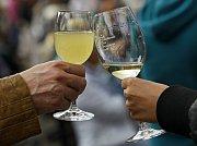 Vinobraní na Grébovce začalo v pátek 22.září na náměstí Míru.