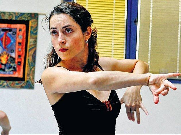 OHNIVÉ FLAMENCO. Součástí festivalu jsou i mezinárodní semináře v tanci.